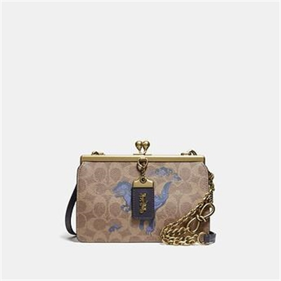 Fashion 4 Coach DOUBLE FRAME BAG 19 IN SIGNATURE CANVAS WITH REXY BY ZHU JINGYI