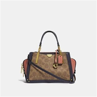 Fashion 4 Coach DREAMER 21 IN COLORBLOCK SIGNATURE CANVAS