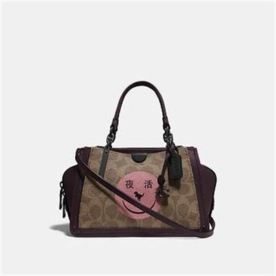 Fashion 4 Coach DREAMER 21 IN SIGNATURE CANVAS WITH REXY BY YETI OUT