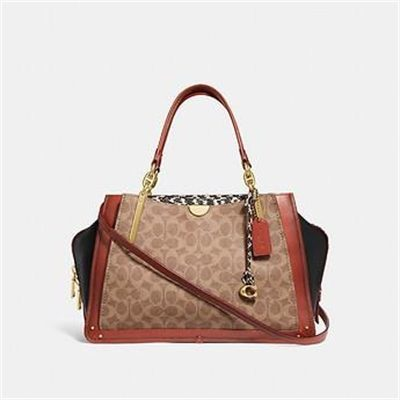Fashion 4 Coach DREAMER 36 IN SIGNATURE CANVAS WITH SNAKESKIN DETAIL