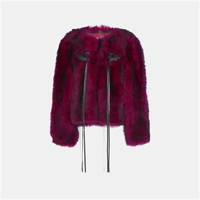 Fashion 4 Coach GLAM PUNK SHEARLING JACKET