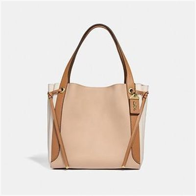 Fashion 4 Coach HARMONY HOBO IN COLORBLOCK