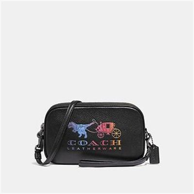 Fashion 4 Coach SADIE CROSSBODY CLUTCH WITH REXY AND CARRIAGE