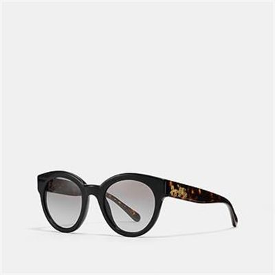 Fashion 4 Coach SIGNATURE ROUND SUNGLASSES