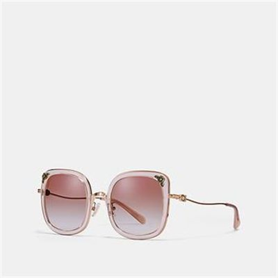 Fashion 4 Coach TEA ROSE SQUARE SUNGLASSES