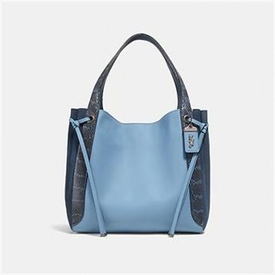 Fashion 4 Coach HARMONY HOBO IN COLORBLOCK WITH SNAKESKIN DETAIL