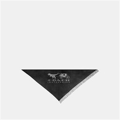 Fashion 4 Coach HORSE AND CARRIAGE PRINT OVERSIZED TRIANGLE SCARF