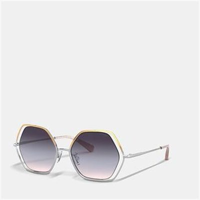 Fashion 4 Coach WIRE FRAME HEXAGON SUNGLASSES