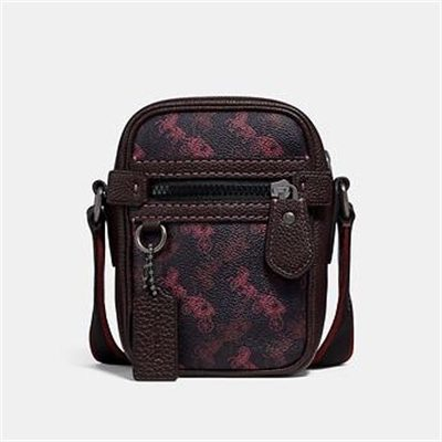 Fashion 4 Coach DYLAN 10 WITH HORSE AND CARRIAGE PRINT