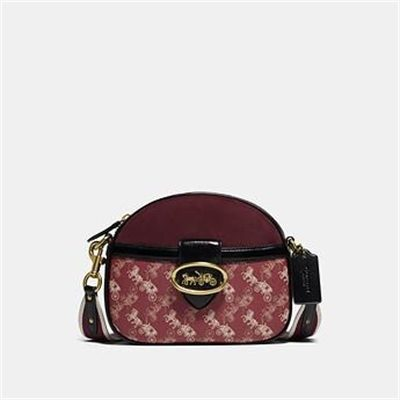 Fashion 4 Coach KAT CROSSBODY WITH HORSE AND CARRIAGE PRINT