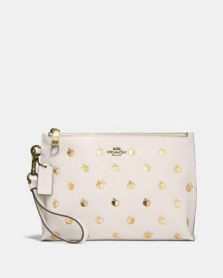 Fashion 4 Coach Charlie Pouch With Apple Print