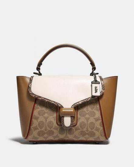 Fashion 4 Coach Courier Carryall 23 In Colorblock Signature Canvas With Snakeskin Detail