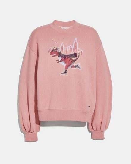 Fashion 4 Coach Rexy City Skyline Sweatshirt With Puff Sleeve