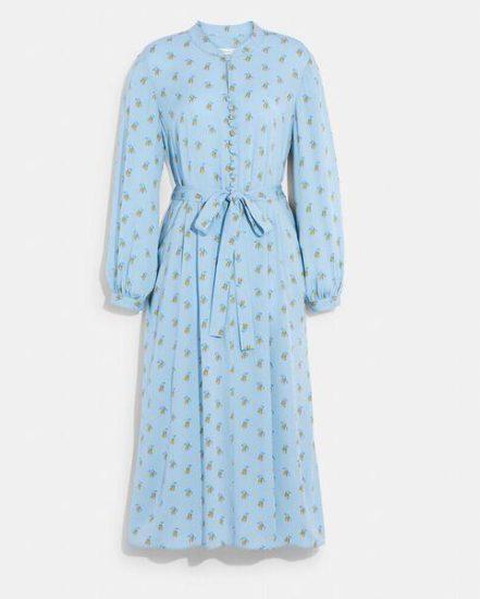 Fashion 4 Coach Printed Long Sleeve Dress